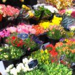 flower seller on rue Cler in Paris