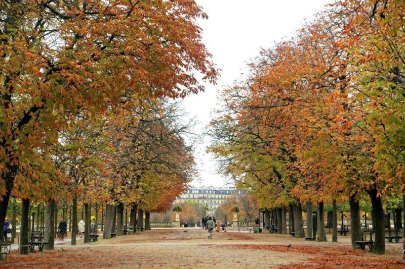 Autumn colors in Jardin du Luxembourg, Paris. Details at une femme d'un certain age.