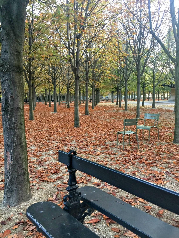 Autumn in Jardin du Luxembourg, Paris. Details at une femme d'un certain age.