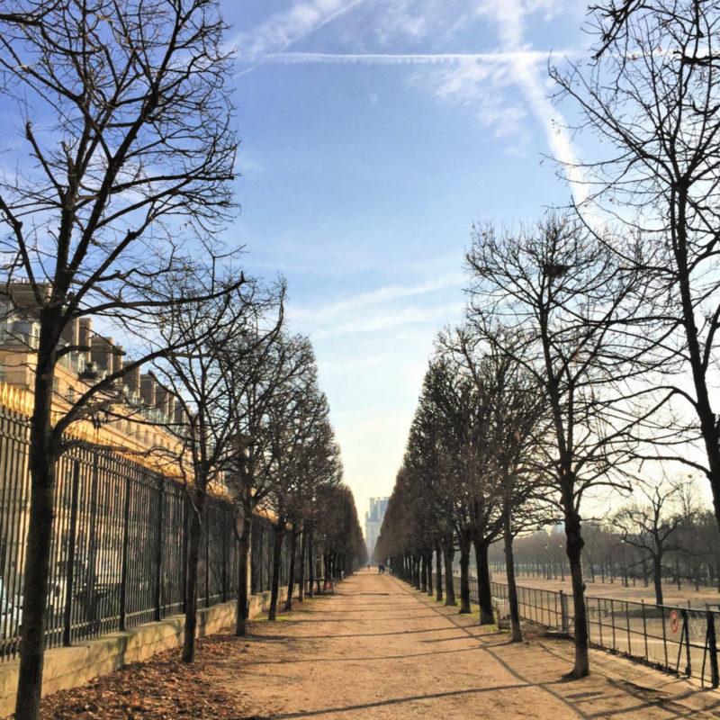 Path in Jardin des Tuileries, Paris, in winter. More at une femme d'un certain age.