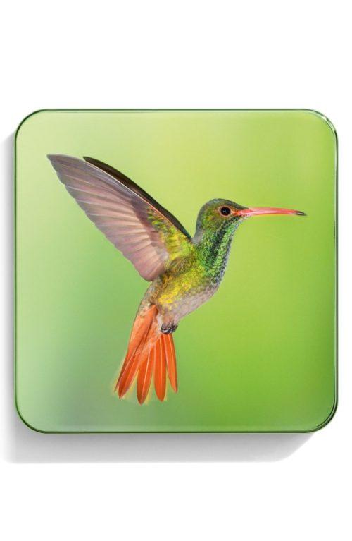 Chantecaille Hummingbirds collection eye shadow quartet compact. Details at une femme d'un certain age.