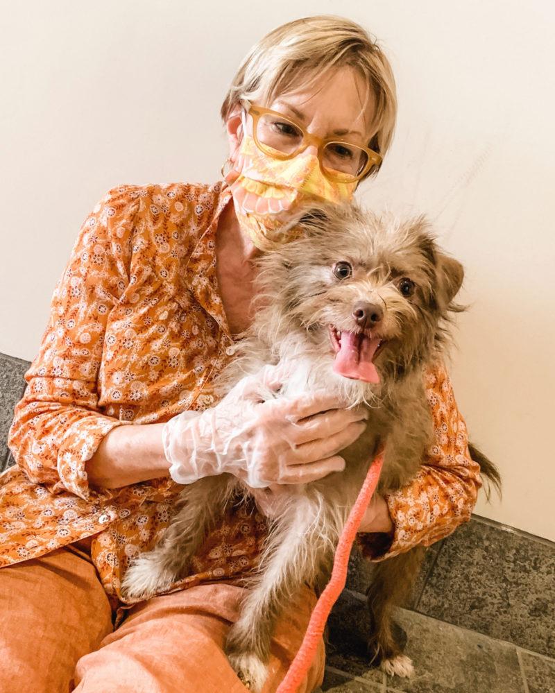 Susan B. meets her new fur kid. Details at une femme d'un certain age.
