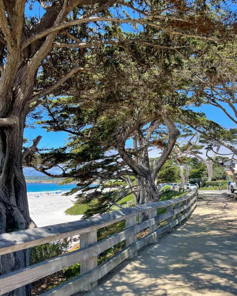 Walking along the beach in Carmel.