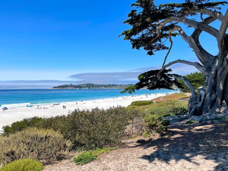 Seascape in Carmel-by-the-Sea.