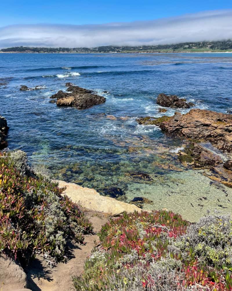 Clear coastal waters in Carmel-by-the-Sea.